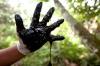 585e5-oil-hand