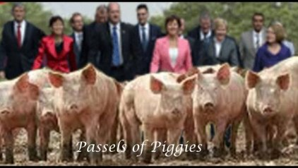 piggies-001